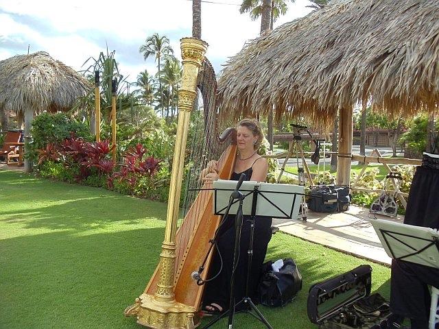 Heavenly Harps